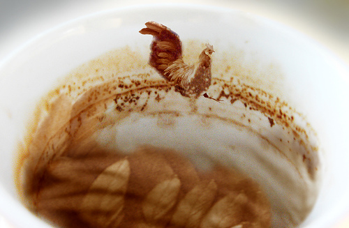 Kaffeebild Hahn.jpg