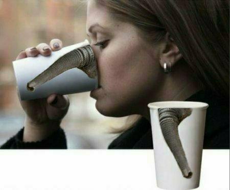 Kaffeebecher Ruessel