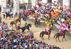 Palio in Siena - Parade der Rennpferde