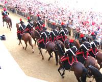 Palio Siena Reiterstandarte Pferde