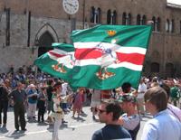 Palio Sien Flagge