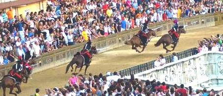 Palio Pferderennen Siena