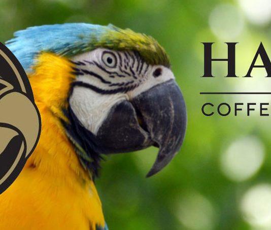 Hardy Kaffee günstiger bestellen